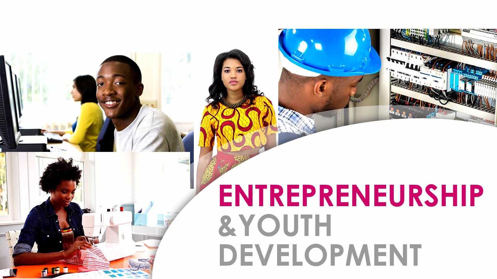 Entrepreneurship and youth development